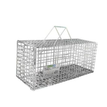 Possum Cage Trap