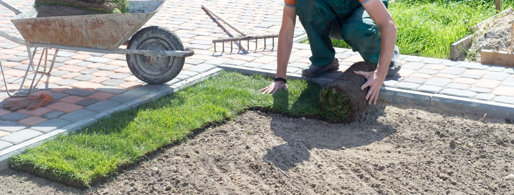 Person Laying Turf